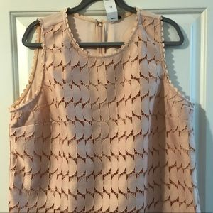 Pink lace shell - Ann Taylor - Sz 18 - Brand New